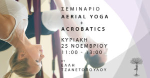 Read more about the article Aerial Yoga & Acrobatics