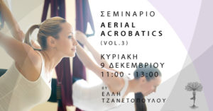 Read more about the article Aerial Acrobatics Workshop Vol.3