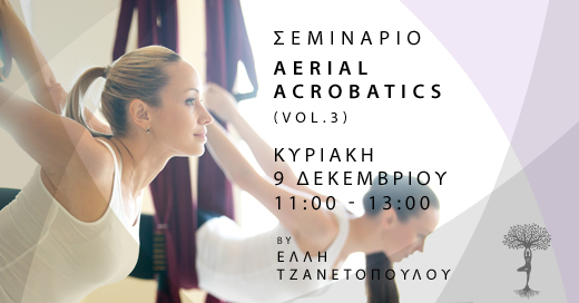 Aerial Acrobatics Workshop Vol.3