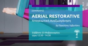 Read more about the article Τεχνικές Restorative Yoga στα πανιά της Aerial