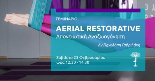 Τεχνικές Restorative Yoga στα πανιά της Aerial