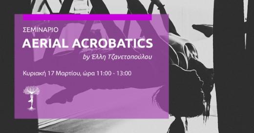 Aerial Acrobatics Vol.4